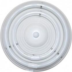 Plafond IL1355 - Eletronet